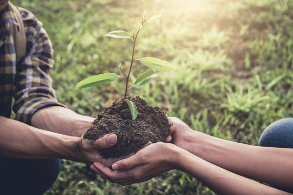 engagement environnemental ReforestAction - Plantons un arbre